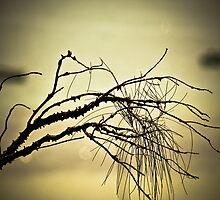 Tree Landscape by Marianne Ellis
