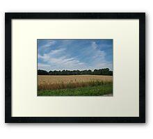Sunny Wheat Framed Print