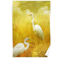 Dance of the Herons Poster