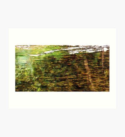 Little Mulgrave River Art Print