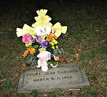 My Baby Sister's Grave - Remembering Her on Her BD by Jane Neill-Hancock