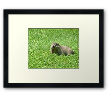 What Shadow Framed Print