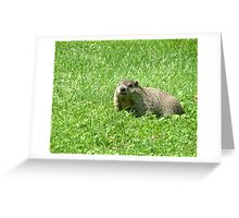 What Shadow Greeting Card