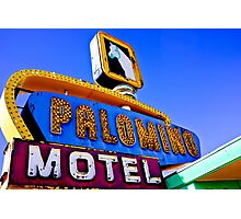 Route 66 Palomino Motel Photographic Print