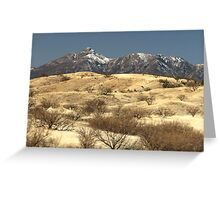 Desert Grasslands  Greeting Card