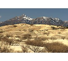 Desert Grasslands  Photographic Print