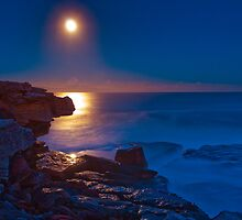 Moonrise over Shark Point by Erik Schlogl