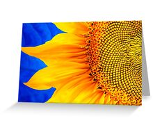Bold Sunflower Art Greeting Card