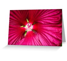 Hibiscus Flower Art Greeting Card
