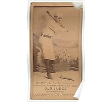 Benjamin K Edwards Collection Walt Wilmot Washington Statesmen baseball card portrait 001 Poster