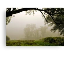 Early Morning Light Landscape Canvas Print