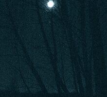 2 oclock moon by evon ski