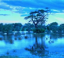 Droughts And Flooding Rains , Junee, NSW Australia - The HDR Experience by Philip Johnson