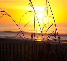 Sea Breeze by Christopher Boscia