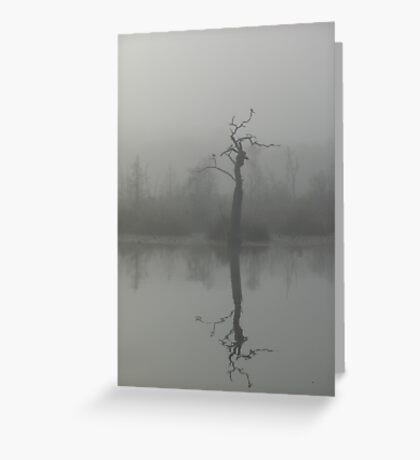 The Bird Tree Greeting Card