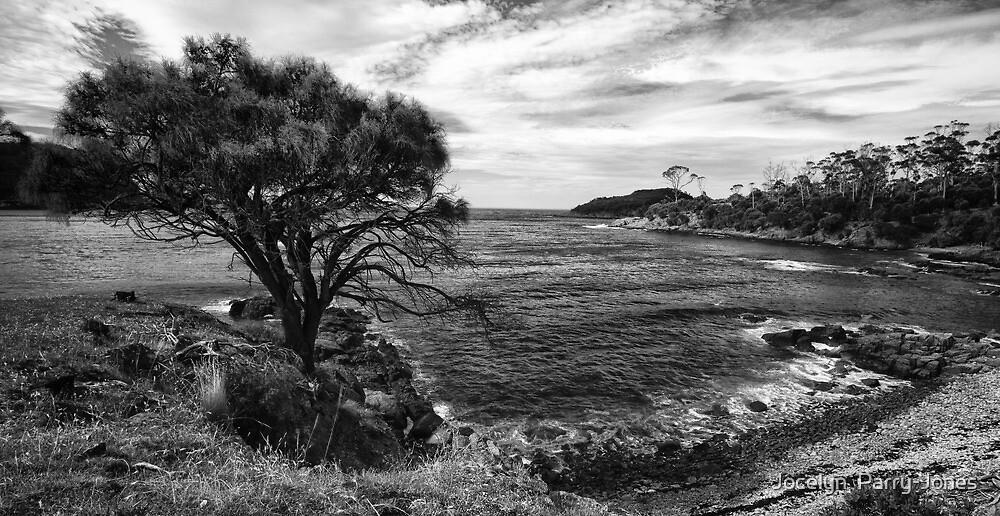 Beach at Bangor #2 by Jocelyn  Parry-Jones