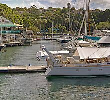 Mosman Rowers Club - Mosman Bay by TonyCrehan