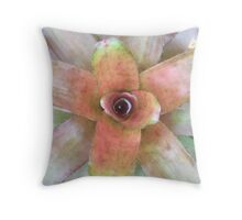 A colorful tropical Bromeliad plant Throw Pillow