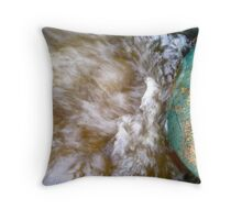 The World on a Globe in a River of Rainwater Throw Pillow