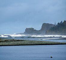 Taholah, Washington Beach by Loisb