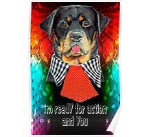 Rottweiler dog ready elegant  Poster