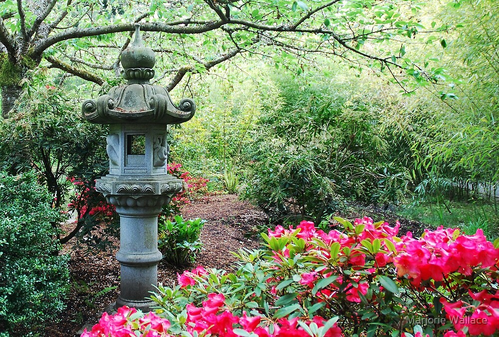 Japanese Lantern ~ Dedication to Japan  by Marjorie Wallace