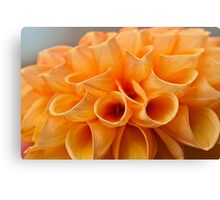Tubular Petals Canvas Print