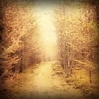 Old Country Road by Romanovna Fine Art Prints