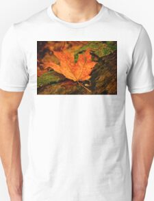 Orange Leaf T-Shirt
