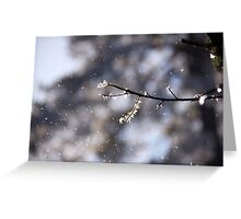 Winter perfection Greeting Card