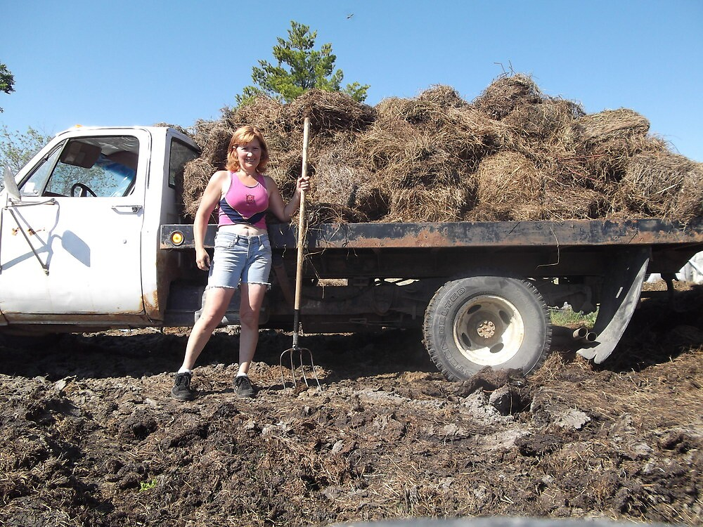 A lot of Manure by stirlingacre