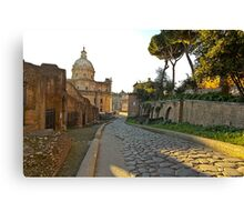 One of the many ancient historical places to see in the city of Rome Canvas Print