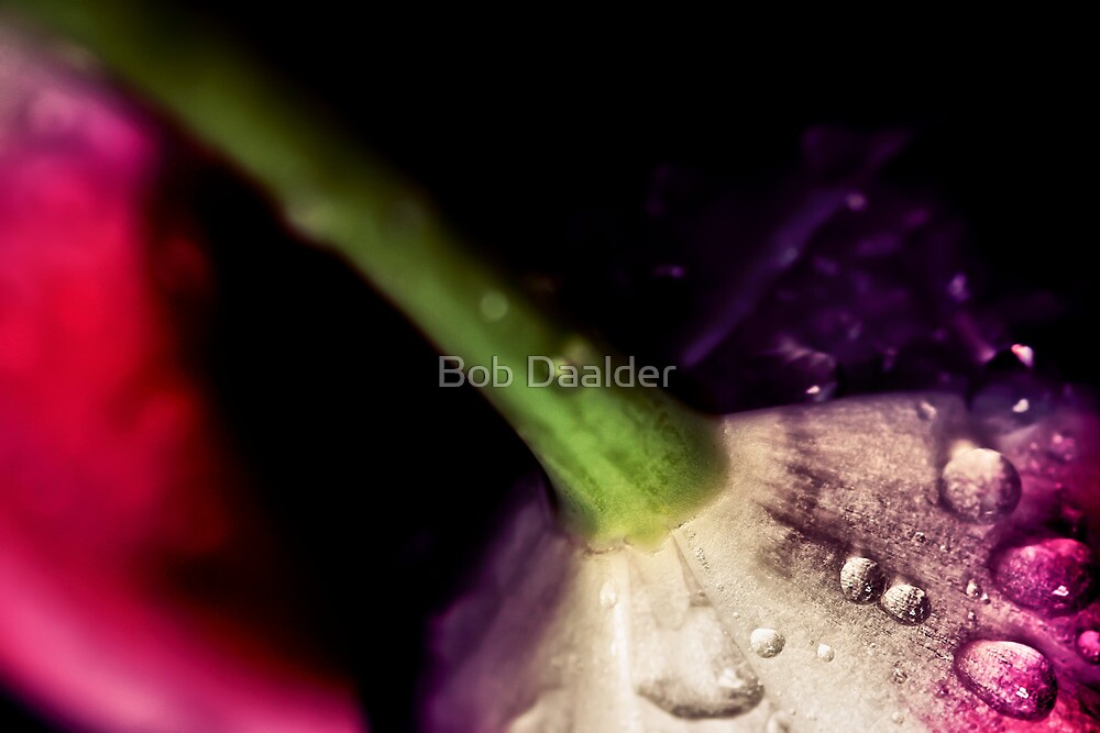 Degenerating beauty... by Bob Daalder