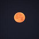 Red Moon - Luna Roja by Bernhard Matejka