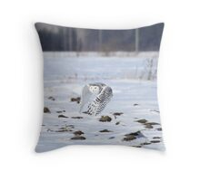 Gravity's Angel Throw Pillow