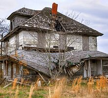 Needs A Roof by Monte Morton