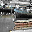Weathered boats on Elephant Island by Carl LaCasse