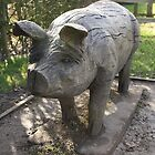 Wooden Pig by Amy L Edwards