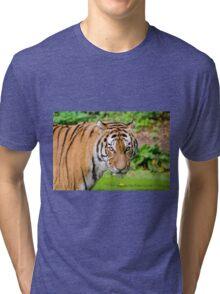 Tiger Tri-blend T-Shirt