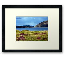 Hills And Heather Framed Print