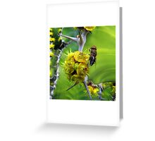 Who is going to sting who? Greeting Card