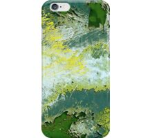 Paint and Rust iPhone Case/Skin