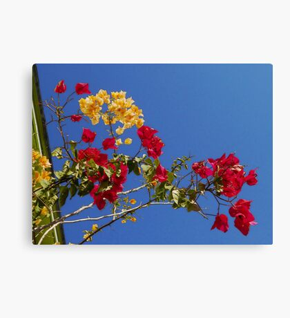 ALMOST PAINFUL Canvas Print