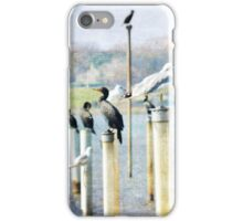 Bird Gallery iPhone Case/Skin