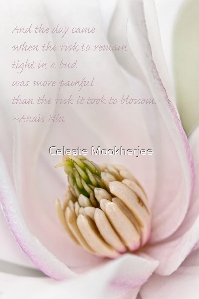 Time to blossom by Celeste Mookherjee