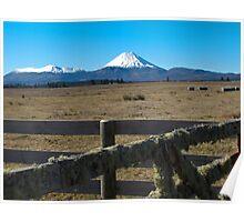 Mount Ngarurhoe 3 Poster