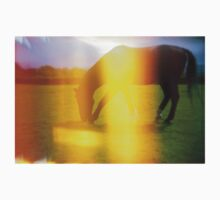 Horse in Light Leak Heaven One Piece - Short Sleeve