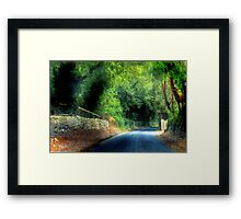 An Irish Lane - Southern Ireland, near Cork Framed Print