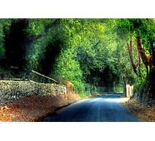 An Irish Lane - Southern Ireland, near Cork Photographic Print