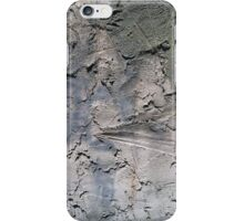 Grit of the Earth iPhone Case/Skin